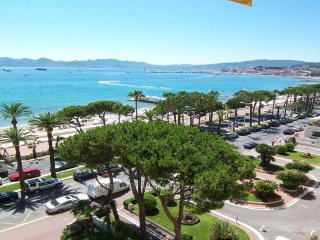 CANNES-12Mts PALAIS fest. PISCINE PRIVEE CHAUFFEE-iIDEAL CONG.-Bienvenus animaux