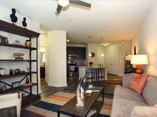 East Austin 2/2 Luxury Apartment! Steps to Downtown! 3ES2HHH