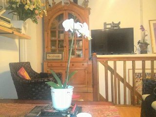 UWS two bedroom apartment Duplex CPW Garden