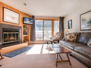 Ski Run Condominiums 203 - Walk to slopes, ski area views, spacious