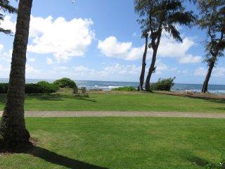 Kauai Kapaa #151 Oceanfront condo Vacation Rental condo - OCEAN!
