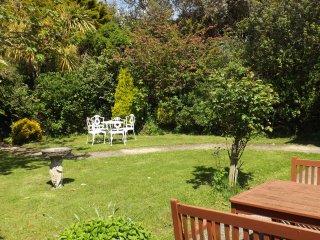 Cherry Tree Garden Summer