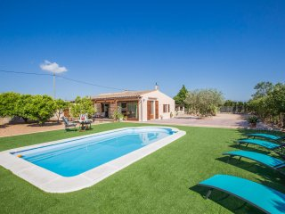SES FORQUES - Villa for 5 people in Algaida