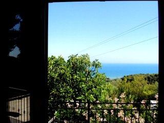 Piccolo Uliveto - Bilocale al 1° piano vista mare