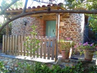Casas Rurales El Jiniebro-Casita del Olivo estudio para dos personas con jardin