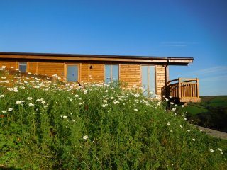 2 Log cabins with stunning views, ideal location near Cardiff, South Wales