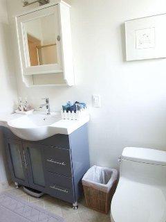 Nice new sink and plenty of storage space.