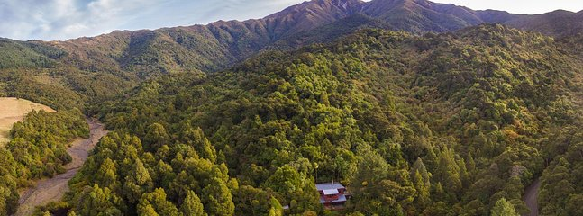 The Lookout nestled in your own private rainforest