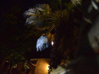 Locami Holiday&House Casa Palmento
