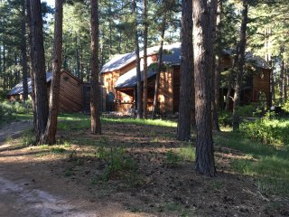 Gorgeous Wooded Vacation Rental on 5 acres, sleeps 20+ between Denver & CoSpring