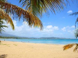 Tropical Paradise PR