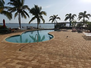 Boca Ciega Resort and Marina - Waterfront View ! See Dolphins from Balcony !