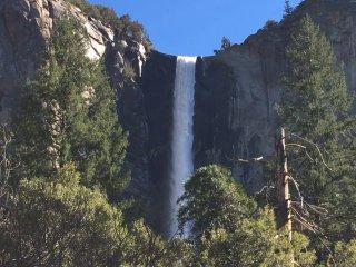 Brand New Yosemite bound