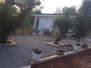 Ampio spazio esterno dedicato alla casa, ideale per far giocare i bambini nel natura!