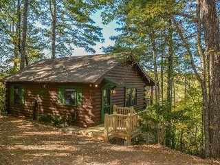 STARLING SKIES- ADORABLE 2 BEDROOM/ 1 BATH CABIN WITH A BEAUTIFUL MOUNTAIN