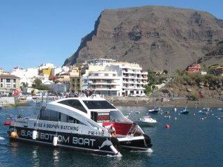 Apartment in Valle Gran Rey, La Gomera with amazing views
