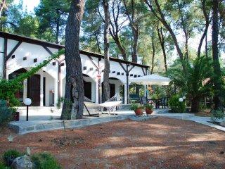 R05 Rustic villa with sea view