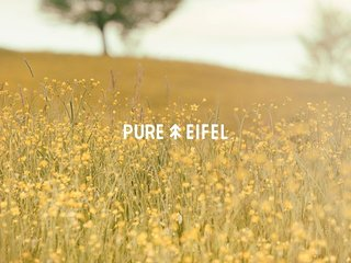 Pure Eifel, Oberkail, Eifel