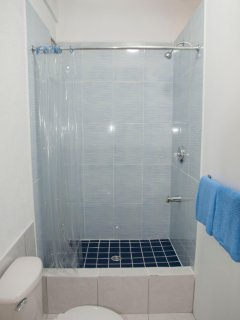 Discover New Bath Detailing including the Blue-and-White Tiled Shower Stall