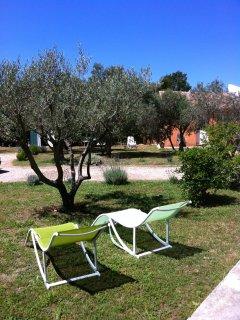 vue sur l'autre gîte : L'olivier