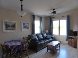 Open-concept kitchen/dining/living area with vaulted ceiling. Leather couch opens into a queen bed.