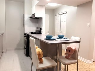 Bright charming apt in downtown Montreal