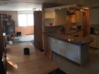 Belfort appartement meuble F4 duplex 140 M2