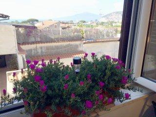 Vesuvio House bilocale in palazzo antico,centralissimo a solo 700 m. da Sorrento