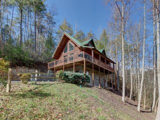 Spacious & dog-friendly cabin w/Jacuzzi, private hot tub, seasonal pool access!
