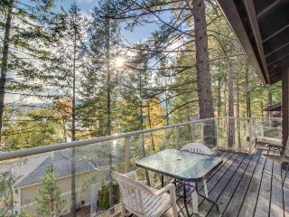 Cozy, dog-friendly condo with lake view, nearby beach access, close to skiing