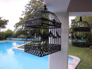 Brassia Villa, Azeitão, Setubal