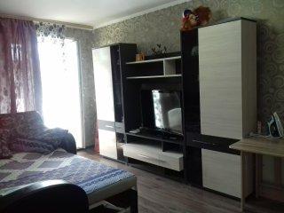 Комфортная 1-комнатная квартира в самом центре города
