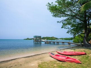 Secluded Waterfront Home with Beach, Dock, Kayaks and Fabulous Views and Sunsets