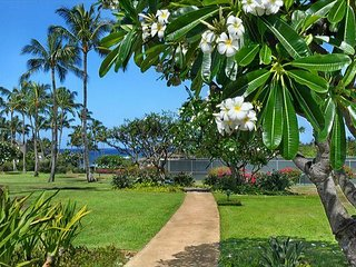 Nicest Property on the South Side of Kauai! Paradise Awaits You!