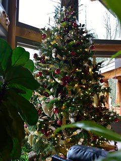 15 foot 'Nature' themed Christmas tree, by AccenTrix Design (featured on Global TV)