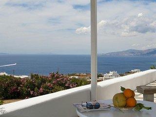 Villa Eleni - 500 m from the beach