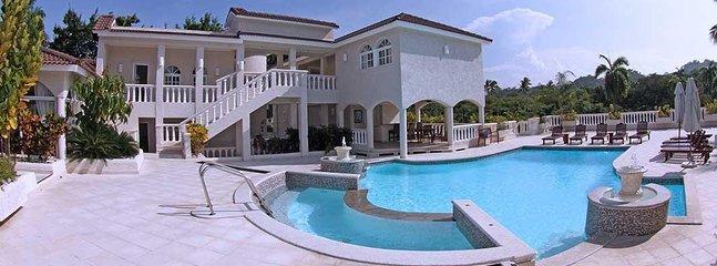 Superbe espace extérieur avec piscine creusée.