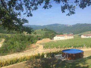 Grote moderne villa in Piemonte