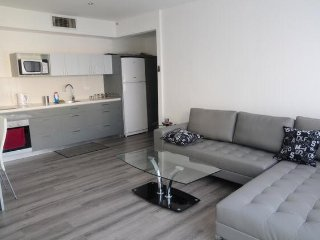 Amazing 2 BR central apartment by Gordon beach