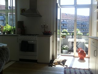 SUNNY APARTMENT IN COOL AREA IN CENTRAL CPH - 5 ROOMS