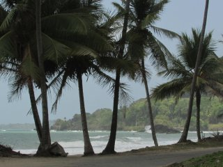 Camping on The Beach in Trinidad, Grande Riviere