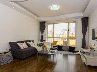 Big 3 bedroom apartment, city centre Shanghai