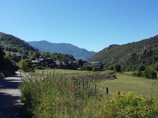 Ós Bru dels Pirineus - Alt Àneu/Baqueira
