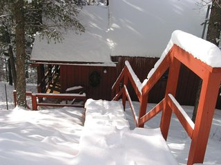 TEDDY CLOUD CABIN Private And Cozy, Yet Close To Town. 1st week/1 free day!