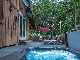 BEAR PAW: Hot Tub, Wi-Fi, Sat. TV, Fido Friendly, Private and close to town!