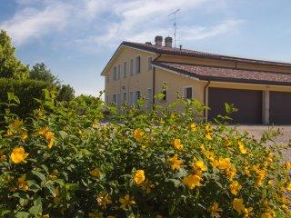 Agriturismo Il Brugnolo - lavanda monolocale nella campagna tra Reggio e Modena