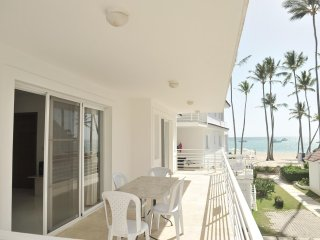 Oreuga Beach Villa - Ocean View, 2 steps to the beach!