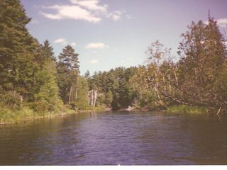 South Branch AuSable River House