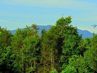 Private, Mt. LeConte Mountain Views