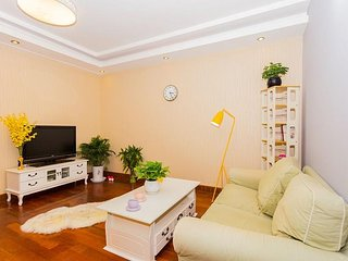 Perfect city gateway 3 bedroom apartment, Jing'an